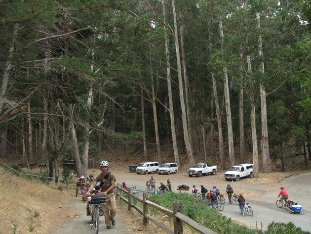 http://davidwilsonandribbons.com/files/gimgs/37_bikecrusade.jpg
